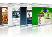 Su pagina web al menor costo