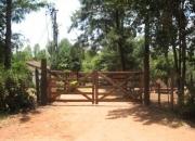 Piribebuy-paraguay: vendo granja formada activa