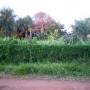 Vendo terreno a pasos de la avda. Manuel O. Guerrero en San Lorenzo