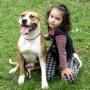 AleSevilla-Adiestrador Canino