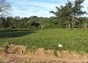 Vendo hermoso Terreno Zona Capiata Ruta 2