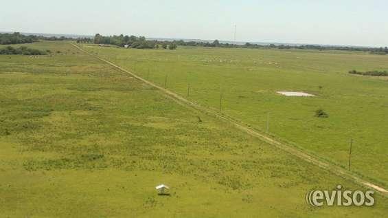 Alquilo campo en misiones zona san miguel