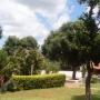 Vendo casa quinta en barrio cerro real caacupe