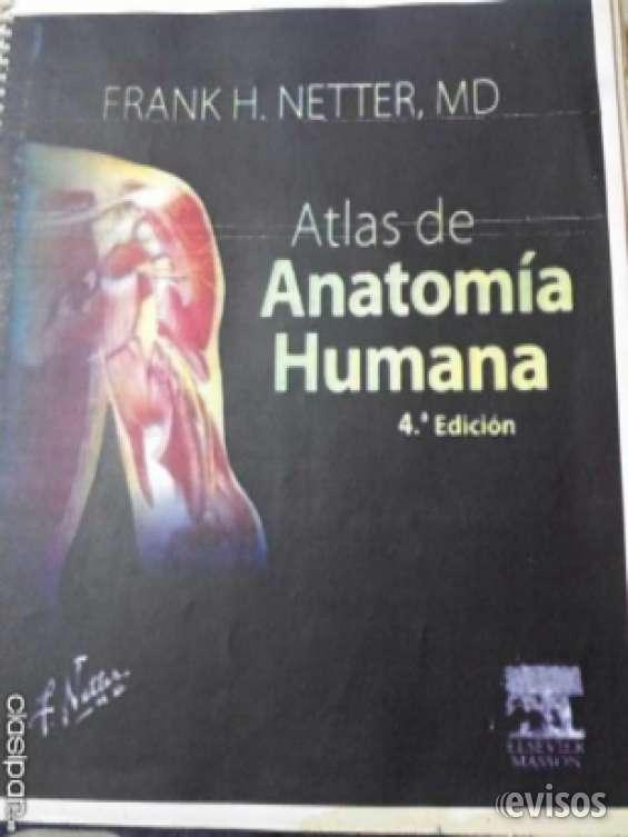 Vendo atlas de anatomia netter 4ta edicion