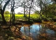 Ypacarai - 4 hectareas con arroyo sobre ruta asfa…