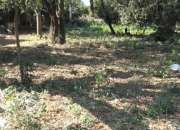 Vendo terreno en Ypané