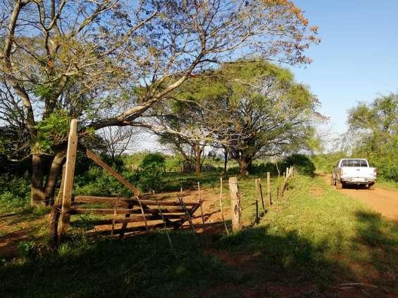 Fotos de Vendo 27 hectáreas de campo en general artigas!!!! 3