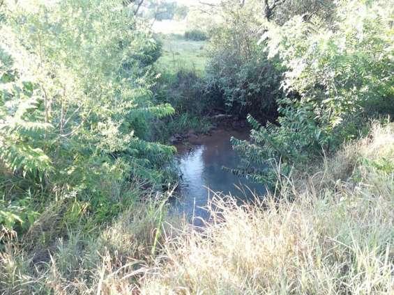 Fotos de Vendo 27 hectáreas de campo en general artigas!!!! 5