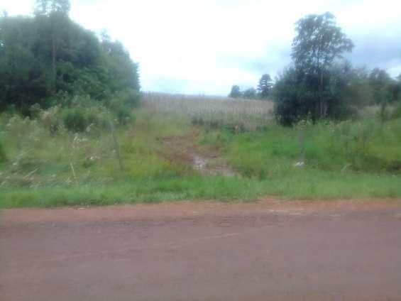 Vendo terreno de 6 has. s/ruta asfaltada en capitan miranda – itapua